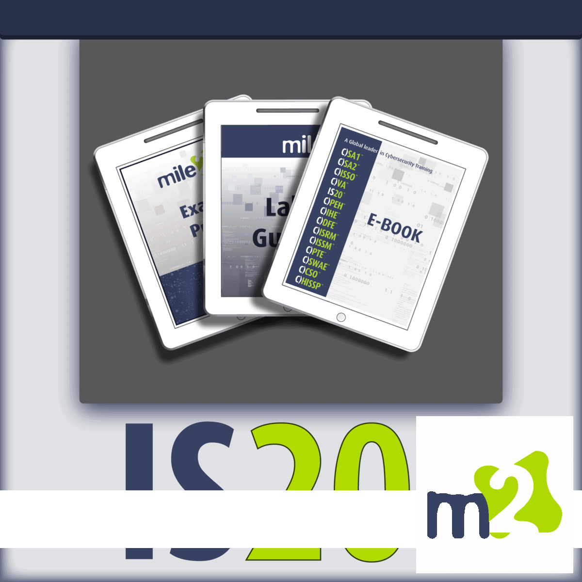C)IS20 Information Security 20 Controls e-course kit